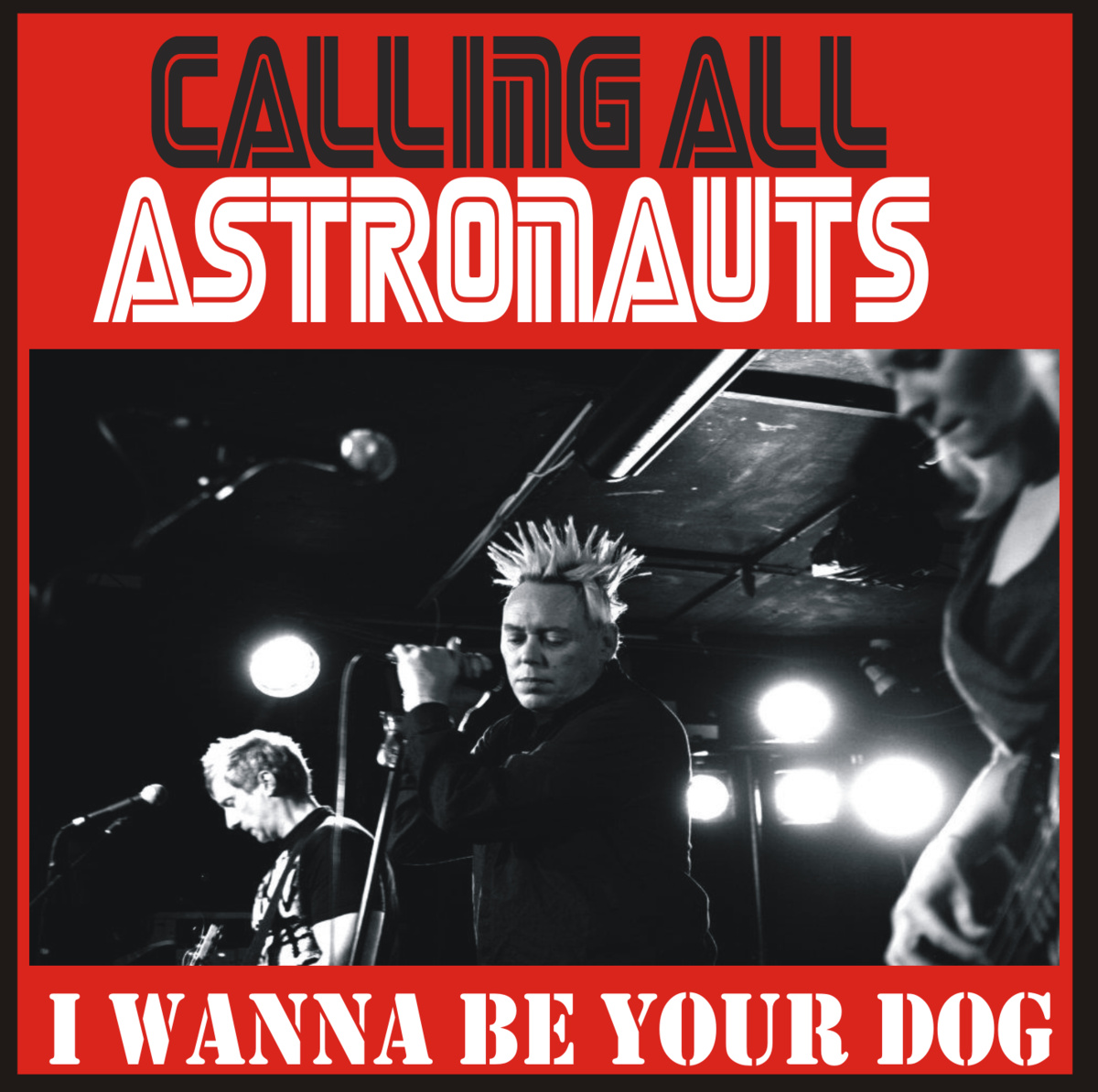 Calling All Astronauts - I Wanna Be Your Dog